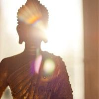 Sharing Buddha's dharma